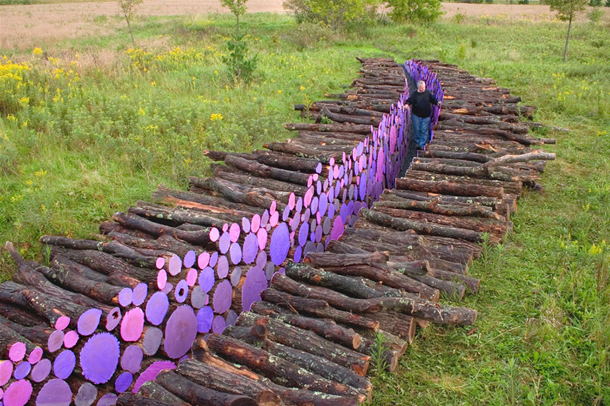 A Walkway of Severed Purple Logs by Michael McGillis_Solucionista_arte