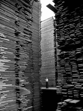Alfred Eisenstaedt: A man standing in the lumberyard of Seattle Cedar Lumber Manufacturing, 1939.